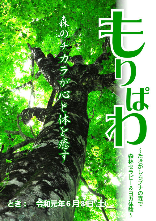 【七福荘タイアップイベント】森林セラピー&ヨガ体験『もりぱわ』【七福温泉 七福荘】