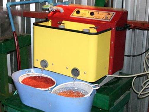 Máquina de picking separando la mortalidad  (200 UTAs)