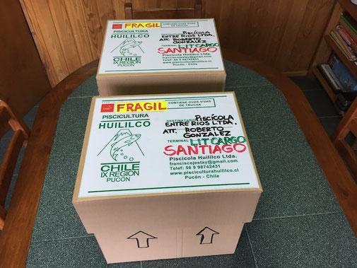 Cajas listas para despacho