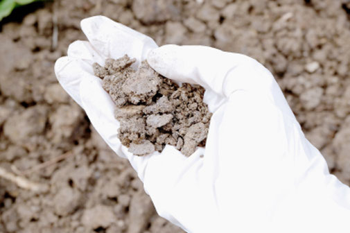 1年に2回の土壌試験