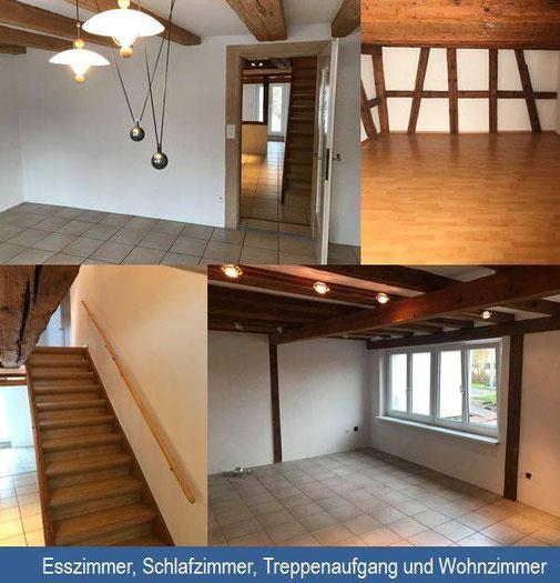 Neuer Anstrich für ein Einfamilienhaus. Ihre Malerin in Zürich.