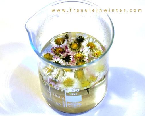 Gänseblümchen-Tee in Seife   Handmade Soap by Fraeulein Winter