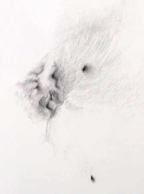 """""""L'idée du cœur"""", détail, photo © David Kidman"""
