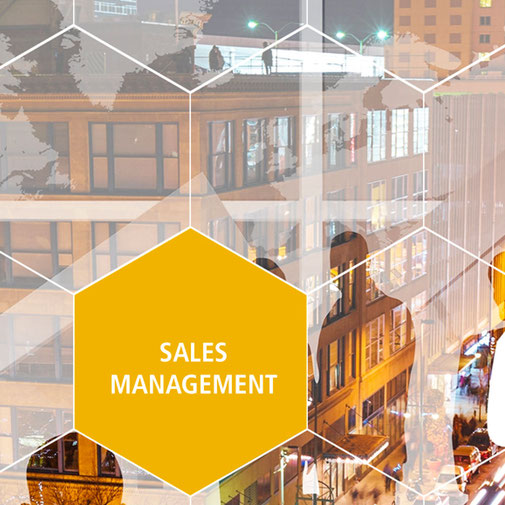 Koller Sales Management