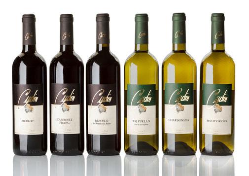 Foto bottiglie vino