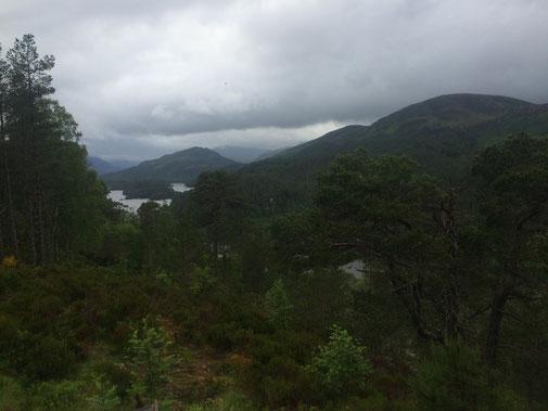 Toller Blick auf die Landschaft - auch bei schlechtem Wetter absolut sehenswert!