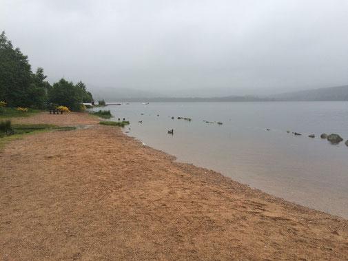 Ein bisschen trüb, aber trotzdem schön - der Strand am Loch Morlich