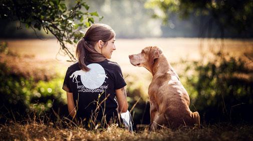 Tiertherapie Mensch und Hund