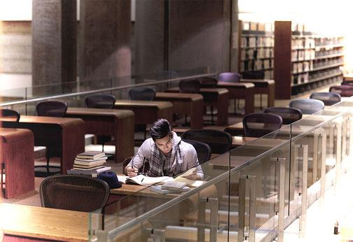 Mentales Training eignet sich hervorragend für Beruf,Schule, Studium sowie Ausbildung