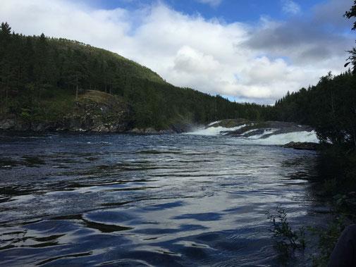 Lachs angeln Norwegen, in großen Flüssen, in Straumen in Meeresbuchten mit Fliege und Blinker, hier großer Fluss