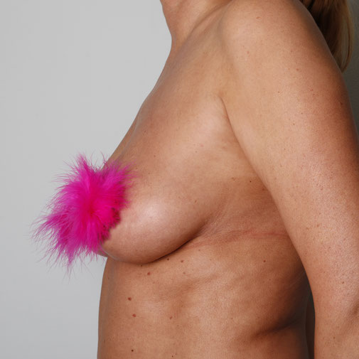 pink nipple pasties fluffy nipple pasties feather nipples fluffy nipples nipple covers roze tepel pasties nipple fluffies