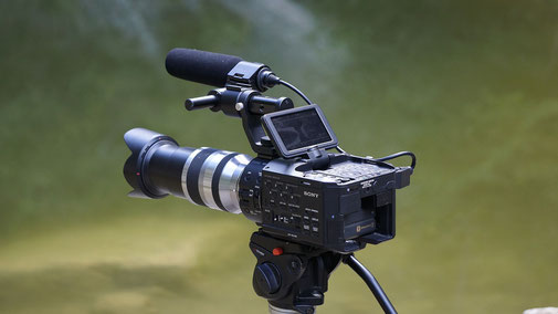 Videobewerbung, Bewerbungsvideo