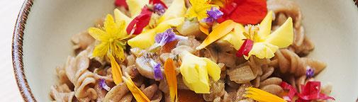 Fenchel; Blüten; Wildkräuter; Im kräutergarten; im kräutergarten; vegan kochen, Backen, im kräutergarten, knospe, grüne kosmetik