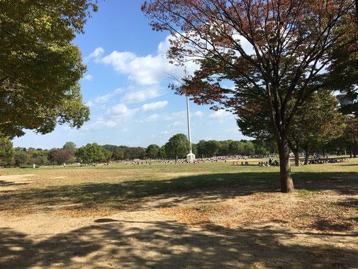 広大な緑地公園