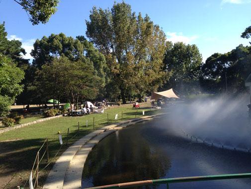 秋晴れの服部緑地公園