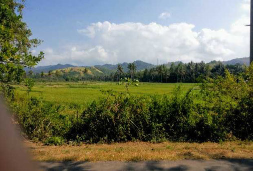 Land for sale in Belongas Bay, South Lombok. For sale by owner