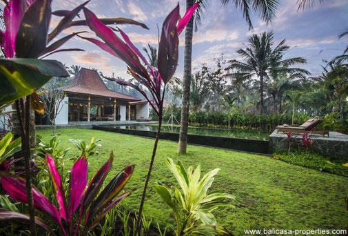 West Bali beachfront joglo resort for sale in Melaya, consisting of 3 Joglo and large empty piece of land