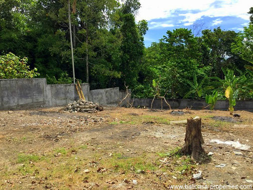 Canggu land for sale, almost 7 are