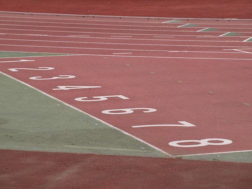 ●武蔵野総合体育館のとなりにある陸上競技場のトラック。歴史のある大きな競技場でした。スタンプは、体育館の入口近く、とても目立つディスプレイの場所にありました。ありがとうございます!