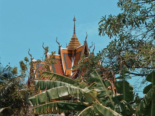 Hinter Palmen ein thailändischer Tempel auf Koh Samui