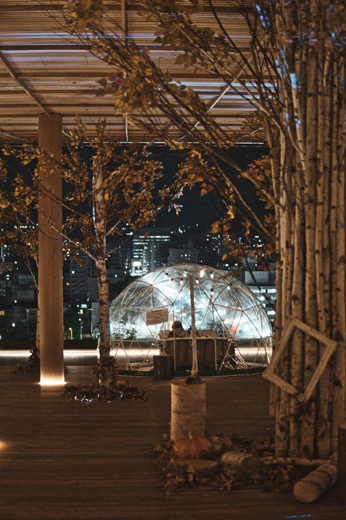 Herbstliche Deko auf dem Dach des Orizuro Towers