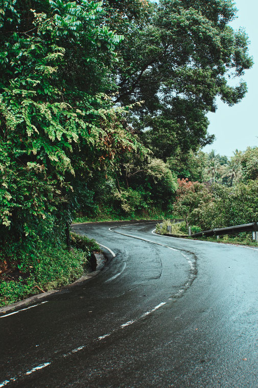 Nasse Strasse führt durch saftiges Grün in Bali