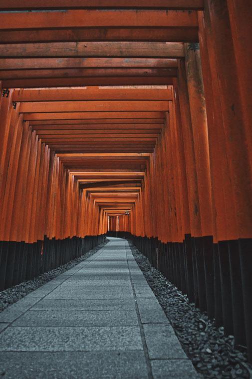 Inari Schrein Kyotot Steinweg führt durch Orangene Tore