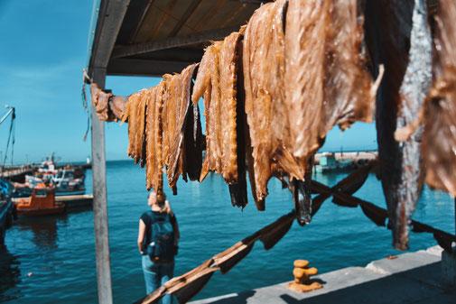 Frischer Fisch trocknet am Hafen in der Sonne