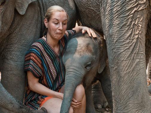 Frau wird von einem Elefantenbaby ins Knie gebissen