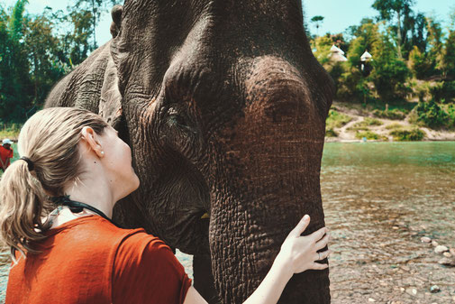 Eine Frau streichelt einen Elefanten über den Rüssel