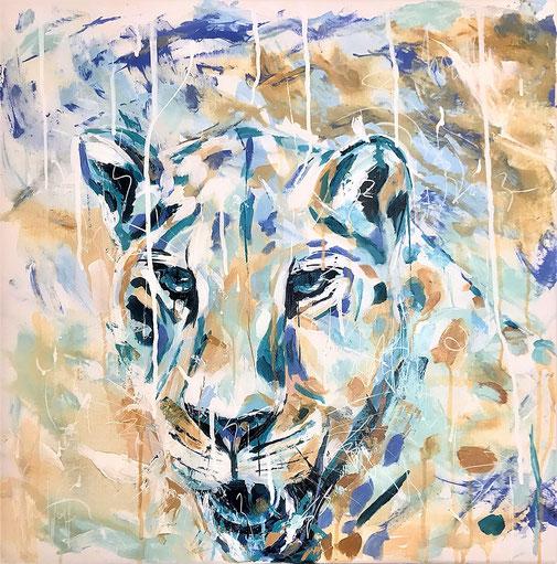 Leopard, Tierbild, Tierporträt