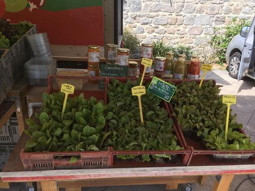 Notre étal  de plants bio sur le marché de SaintGalmier