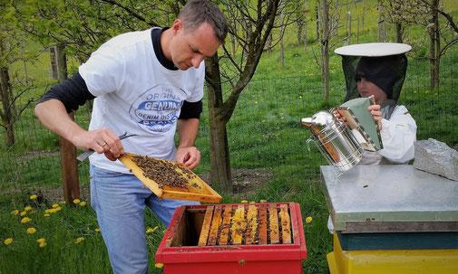 """""""Feinstes vom Maltataler"""": Bienenstand der Imkerei Peball in Malta"""