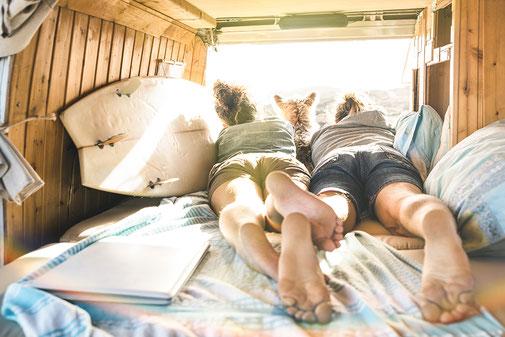 Vorbereitungen auf Deinen Urlaub mit Hund - Tipps & Tricks