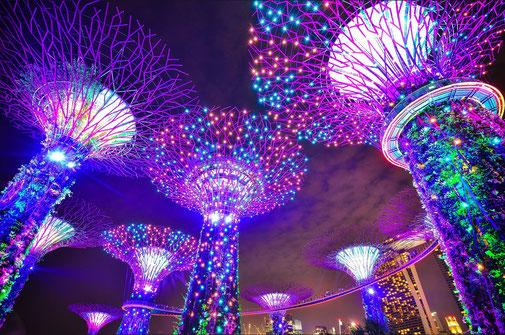 Gänsehaut im Gardens by the Bay in Singapur