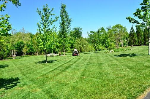 optimissez l'entretien des parcs, jardins, espaces verts avec agralis, spécialiste en irrigations