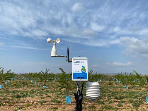 station météo, météorologie, pluviomètre, objet connecté