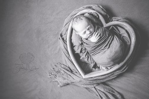 Newbornshooting, Babyfotos, Newbornfotos, Homestory, Großfamilie, Familienfotos, Familienshooting, Bodenkirchen