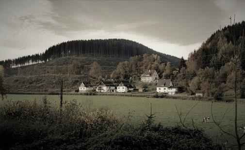 Bebauung im Mühlental, vom Weg entlang des Mühlengrabens aus gesehen