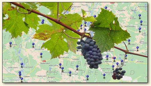 Anbaugebiete Lausitzer Wein