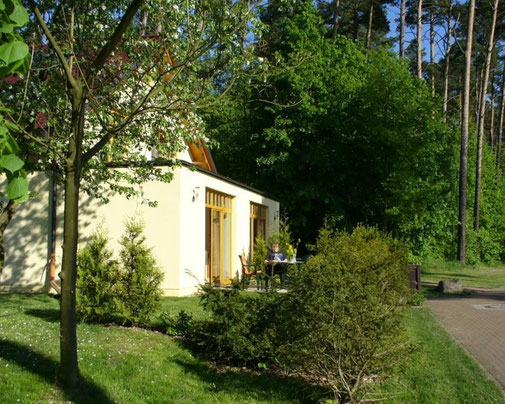 Apartments und Ferienwohnung in Templin am Wald und See
