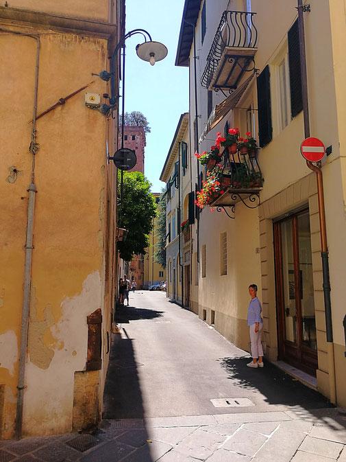 Via delle Chiavi D'Oro mit Blick auf den Torre Guinigi, Lucca