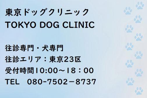 犬猫を連れての海外旅行・出国入国なら行政書士七野国際法務事務所へ