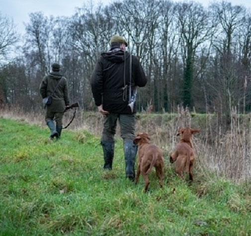 Hunt & Hound - Jagdhundeseminare VJP und HZP