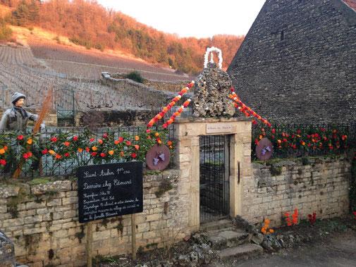 Nos décorations devant notre premier cru ''Derrière Chez Edouard'' lors de la ST-Vincent tournante à SAINT AUBIN