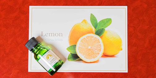 レモンCitrus Limon