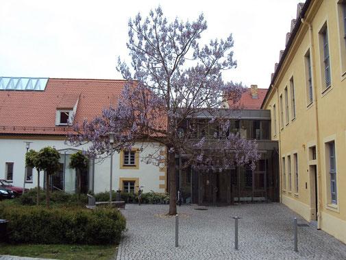 Foto: Stadtbibliothek Torgau