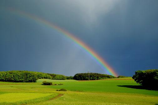 L'arc en ciel est un symbole de paix. L'arc en ciel semblable à une émeraude nous fait penser au règne grandiose de paix et de justice de Jésus sur la terre. La couleur verte de l'émeraude fait penser à la couleur de la végétation sur la terre.