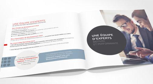 LSZ Communication - Graphiste - Directrice artistique freelance Nantes - #lepetitoiseaudelacom - OLA BUSINESS - TELEMARKETING - dépliant - plaquette - Agence caribou - Tourcoing