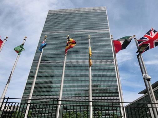 Vereinte Nationen Weltbienentag